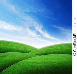 erba, paesaggio verde