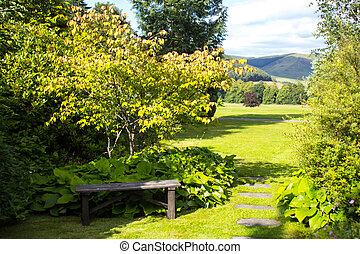 erba, panca legno, verde, giardino