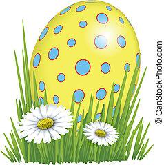 erba pasqua, uovo