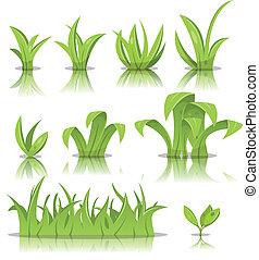 erba prato, set, foglie