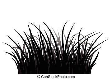 erba, silhouette
