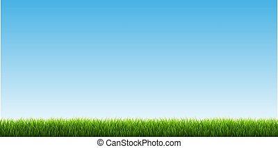 erba verde, bordo, cielo