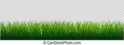 erba verde, bordo, trasparente, fondo