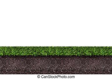erba verde, con, suolo, bianco, fondo, interpretazione
