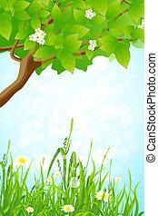 erba verde, ramo albero