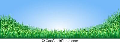 erba zona, verde, illustrazione