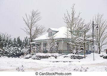 erbe, daheim, während, a, winter, sturm, in, vancouver insel, kanada