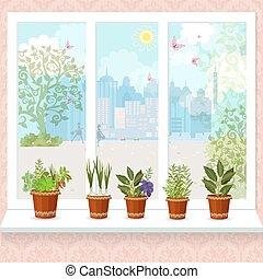 erbe, in, vasi fiore, crescente, su, uno, windowsill., il, soleggiato, città, spirito