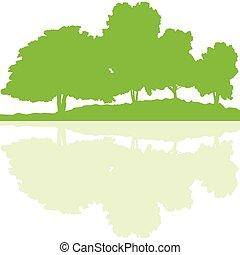 erdő, bitófák, vad, természet, körvonal, táj, ábra, háttér,...