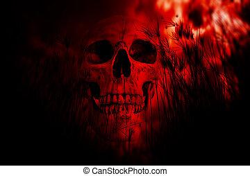 erdő, emberi koponya