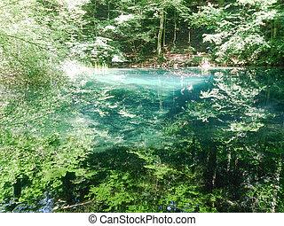 erdő, folyó, alatt, hegyek, természet parkosít, noha, bitófák, és, river.