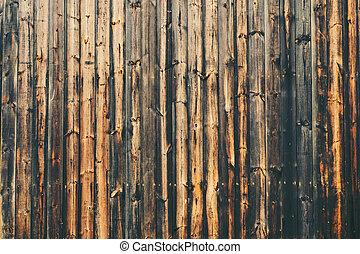 erdő, háttér, struktúra