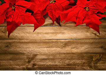 erdő, karácsony, háttér