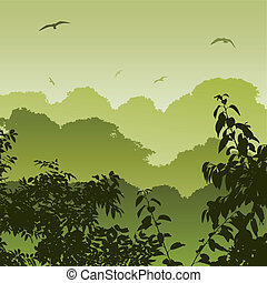 erdő, táj