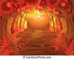 erdő, varázslatos