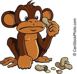 erdnüsse, karikatur, affe
