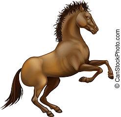 erección, caballo, marrón