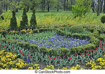 eredet, pázsit, virág kert