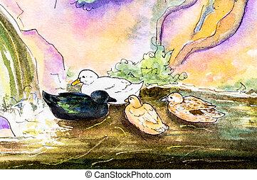eredeti, festmény, közül, tenisznadrág, képben látható, water.