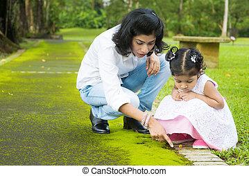erforschen, indische , glückliche familie, natur