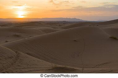 Erg Chebbi dunes at sunset, Morocco