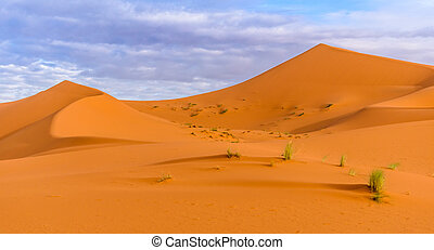 Erg Chebbi sand dunes in Moroccan desert in the morning
