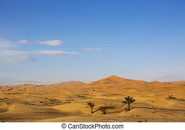 erg chebbi sand dunes - the erg chebbi sand dunes in...