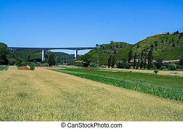 Ericeira Portugal.
