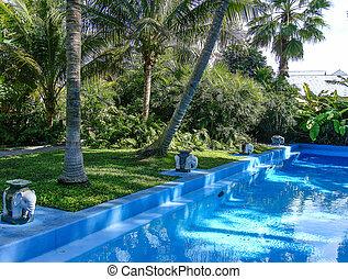 Ernest Hemmingway's Home Pool - Key West, Fl Ernest ...