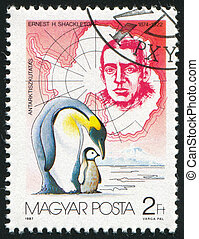Ernest Shackleton and Penguins - HUNGARY - CIRCA 1987: stamp...