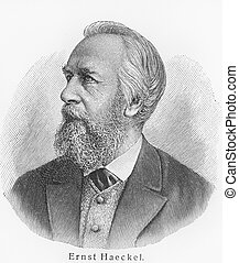 Ernst Haeckel - Picture from Meyers Lexicon books written in...