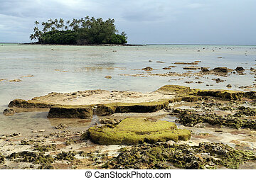 Some coral banks at low tide near the beach of Muri lagoon, Rarotonga, Cook Islands.