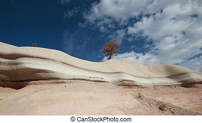 erosão, vento, pedras