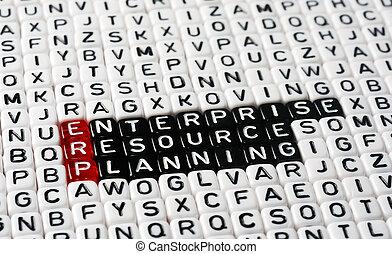 ERP Enterprise Resource Planning