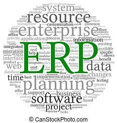 ERP in word tag cloud