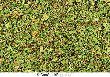 erva, fundo, textura, estragão