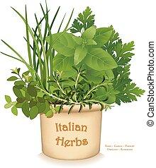 erva, italiano, jardim, plantador