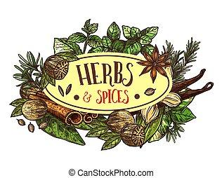 ervas temperos, ícone, com, condimentos, ao redor, sinal