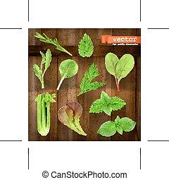 ervas, vetorial, ícones