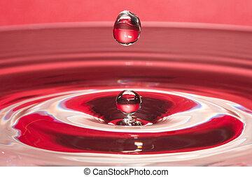 esés, water-drop, closeup, piros, folyékony