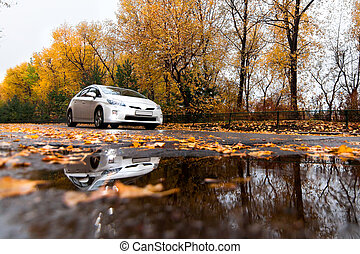 esős, autó, keverék, ősz nap, út
