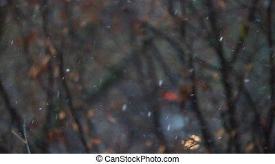 es ist, schneien, winter, schlechtes wetter