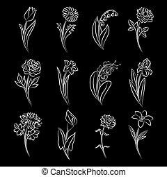 esboçado, flowers., cobrança