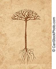esboço, árvore, com, raizes, ligado, antigas, grunge, papel