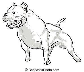 esboço, barking, ilustração, mão, vetorial, pitbull, desenho
