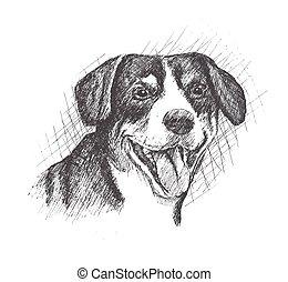 esboço, cão, mão, fundo, desenhado, face branca