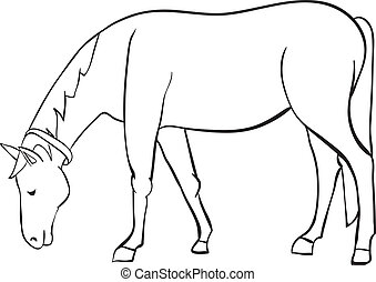 esboço, cavalo