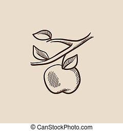 esboço, colheita, maçã, icon.