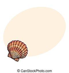 Esboço, coloridos, isolado, Ilustração, vieira, vetorial,  saltwater, mar, concha, estilo