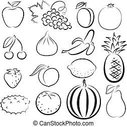 esboço, de, diferente, frutas
